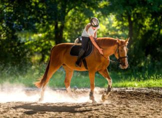 Che cosa serve per fare equitazione